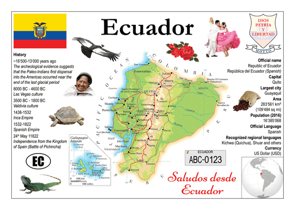South America | Ecuador MOTW - top quality approved by www.postcardsmarket.com specialists