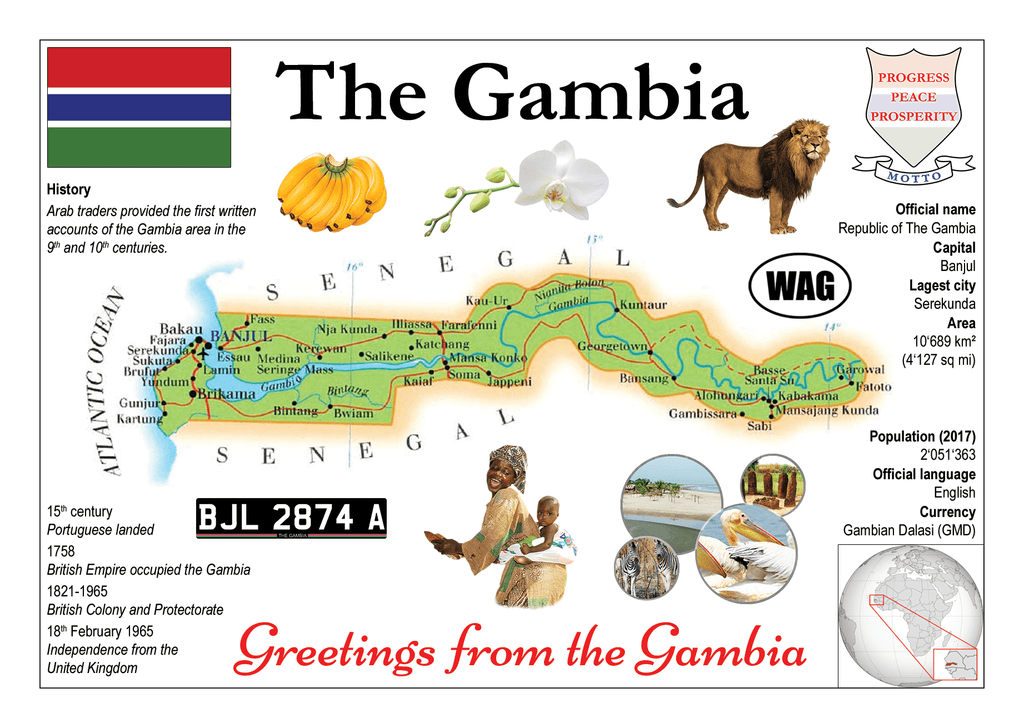 AFRICA | The Gambia MOTW - top quality approved by www.postcardsmarket.com specialists
