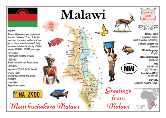 AFRICA | Malawi MOTW - top quality approved by www.postcardsmarket.com specialists