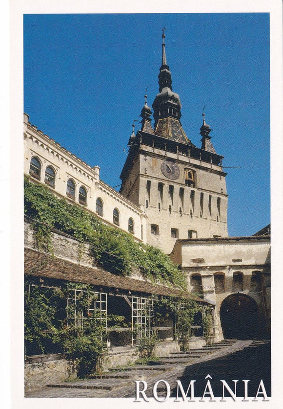 LAD Romania - Sighisoara View The Clock Tower