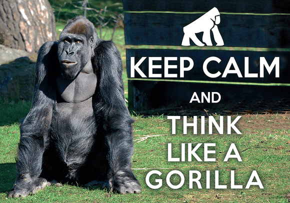 Photo: Keep calm and think like a Gorilla (bundle x 5 pieces) - top quality approved by www.postcardsmarket.com specialists