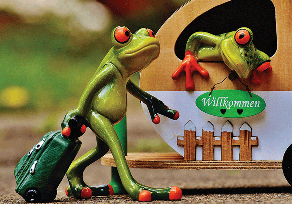Photo: Happy Frog: Welcome 9/9 - top quality approved by www.postcardsmarket.com specialists