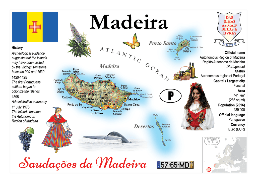Madeira MOTW - top quality approved by www.postcardsmarket.com specialists