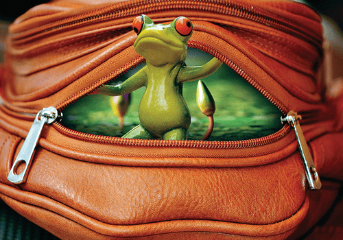 Photo: Happy Frog: Surprise! 5/9 (bundle x 3 pieces) - top quality approved by www.postcardsmarket.com specialists