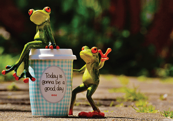 Happy Frog: Today is gonna be a good day 1/9 - www.postcardsmarket.com