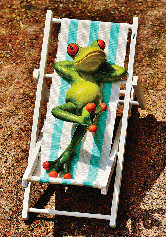Happy Frog: Chill & Relax 2/9 - www.postcardsmarket.com