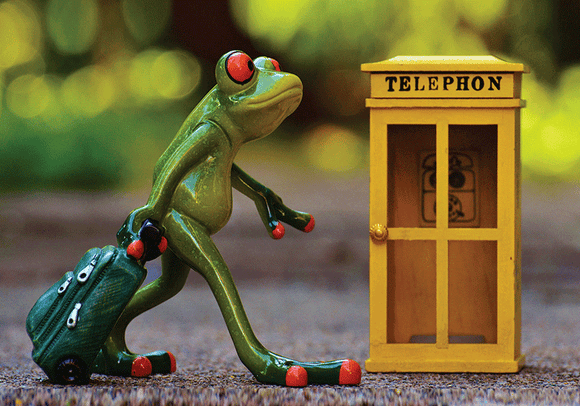 Photo: Happy Frog: The traveller 6/9 - Postcards Market