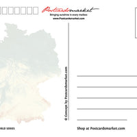 Europe | GERMANY - FW (country No. 19) - top quality approved by www.postcardsmarket.com specialists