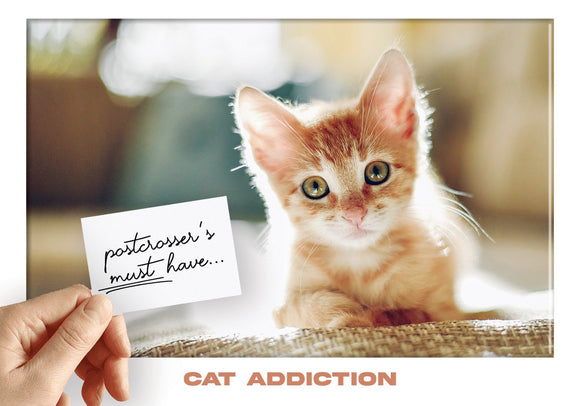 Photo: Postcrosser's Must Have - Cat Addiction - Kitty - top quality approved by www.postcardsmarket.com specialists