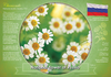 National flower of Russia
