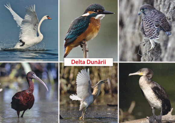 3 x LAD Romania - The Danube Delta - UNESCO list
