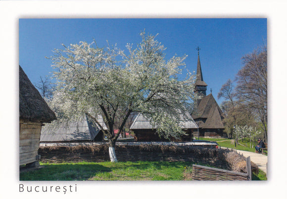 Market Corner: Bundle of 3 x LAD Romania - Bucharest - The Village Museum spring time - top quality approved by www.postcardsmarket.com specialists