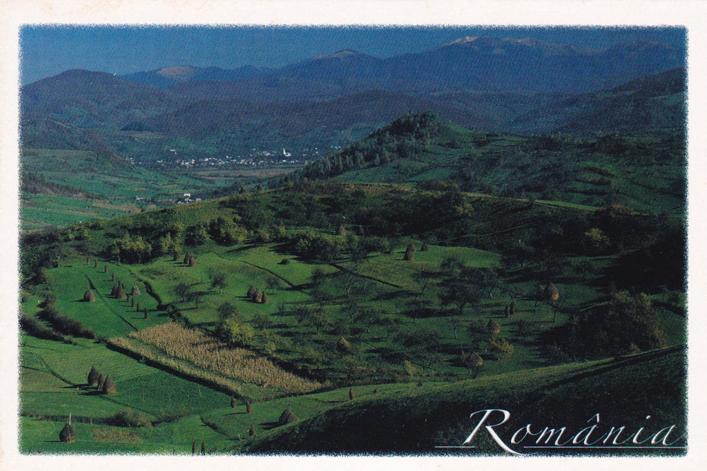 Market Corner: Bundle of 5 x LAD Romania - Maramures - Autumn in Valeni - top quality approved by www.postcardsmarket.com specialists