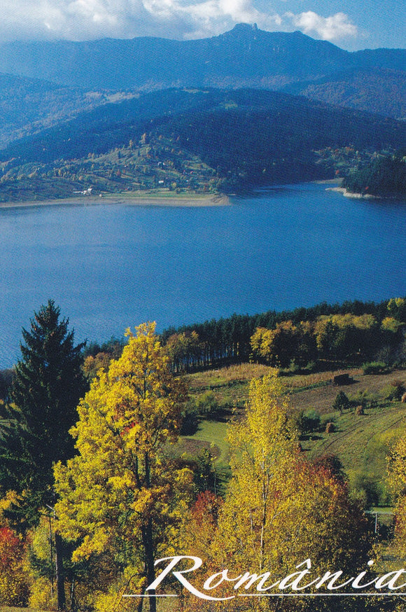 Market Corner: Bundle of 5 x LAD Romania - Bicaz Lake N 288-19 - top quality approved by www.postcardsmarket.com specialists