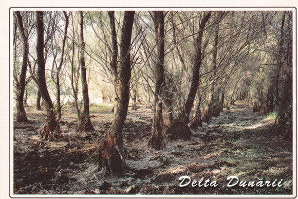 LAD Romania - The Danube Delta - UNESCO list N 248-16