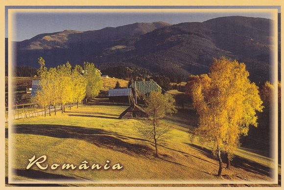 Market Corner: Bundle of 5 x LAD Romania - Fundata Village - top quality approved by www.postcardsmarket.com specialists