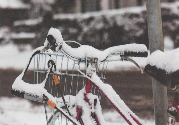Photo: Snow & Bike (bundle x 5 pieces) - top quality approved by www.postcardsmarket.com specialists