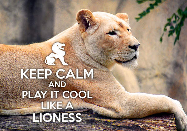 Keep calm and play it cool like a lioness