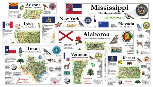 Collector's pack: North America | United States - ALL 51 STATES (MOTW US) - pack of 51 cards - top quality approved by www.postcardsmarket.com specialists