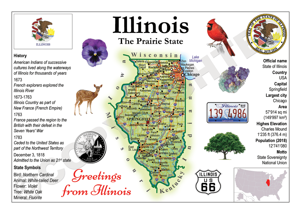 United States - ILLINOIS (MOTW US) - top quality approved by www.postcardsmarket.com specialists