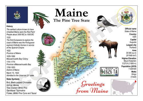 North America | U.S. Constituent - MAINE (MOTW US) x3pieces - top quality approved by www.postcardsmarket.com specialists