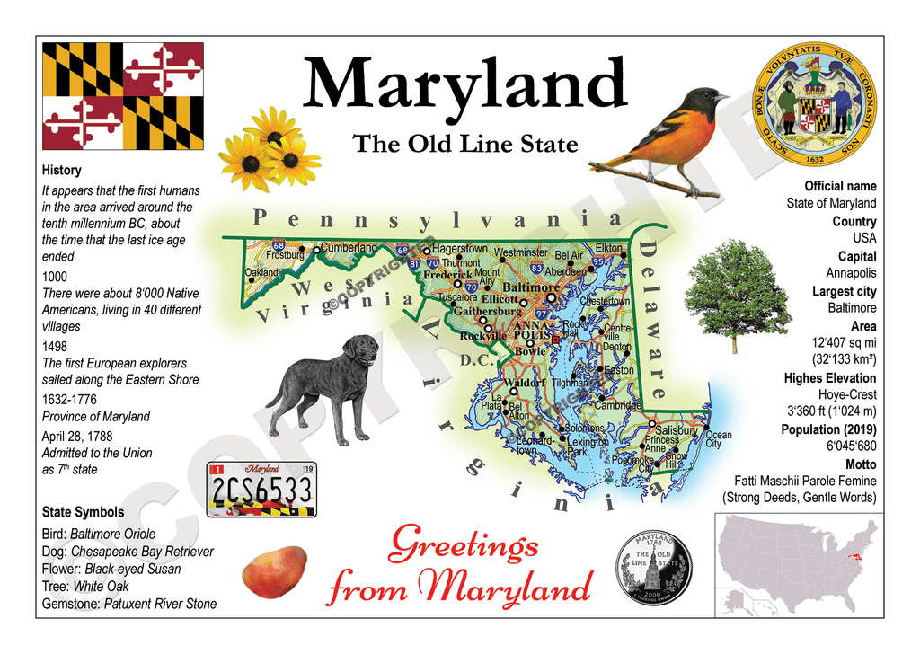 United States - MARYLAND (MOTW US) - top quality approved by www.postcardsmarket.com specialists