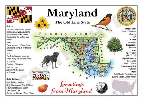 North America | U.S. Constituent - MARYLAND (MOTW US) x3pieces - top quality approved by www.postcardsmarket.com specialists