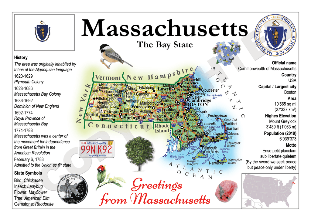 United States - MASSACHUSETTS (MOTW US) - top quality approved by www.postcardsmarket.com specialists