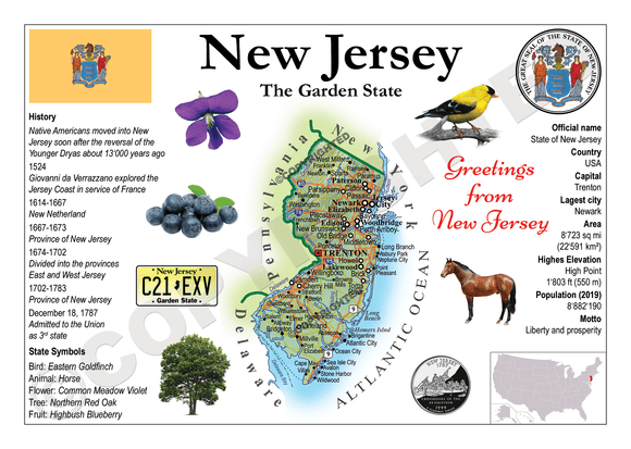 United States - NEW JERSEY (MOTW US) - Postcards Market
