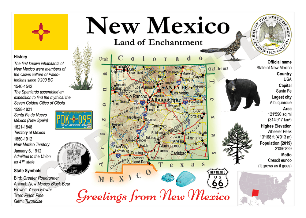 North America | U.S. Constituent - NEW MEXICO (MOTW US) - top quality approved by www.postcardsmarket.com specialists