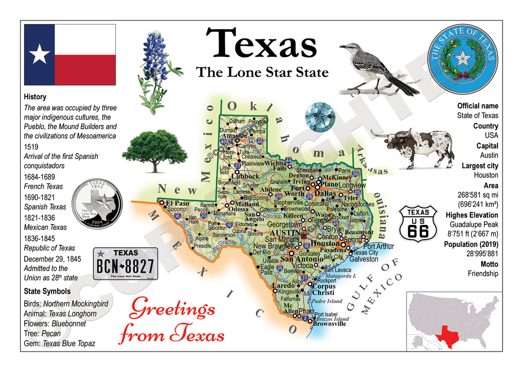 United States - TEXAS (MOTW US) - top quality approved by www.postcardsmarket.com specialists