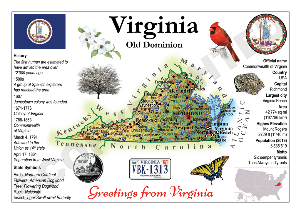 United States - VIRGINIA (MOTW US) - Postcards Market