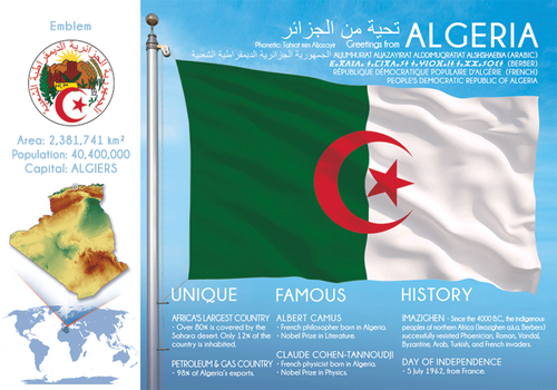 AFRICA | ALGERIA - FW (country No. 33) - top quality approved by www.postcardsmarket.com specialists
