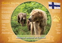 National Animal of Finland - top quality approved by www.postcardsmarket.com specialists
