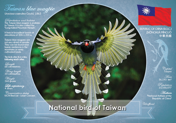 National Bird of Taiwan - top quality approved by www.postcardsmarket.com specialists