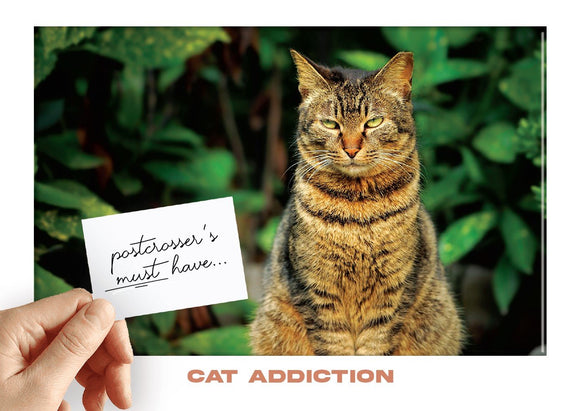 Photo: Postcrosser's Must Have - Cat Addiction (bundle x 5 pieces) - top quality approved by www.postcardsmarket.com specialists
