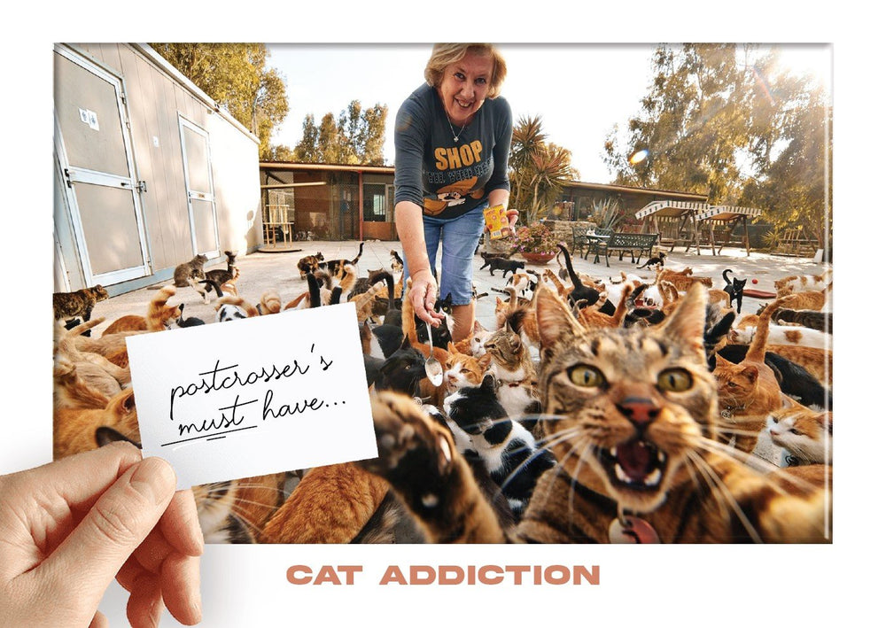 Photo: Postcrosser's Must Have - Cat Addiction (feeding) (bundle x 5 pieces) - top quality approved by www.postcardsmarket.com specialists
