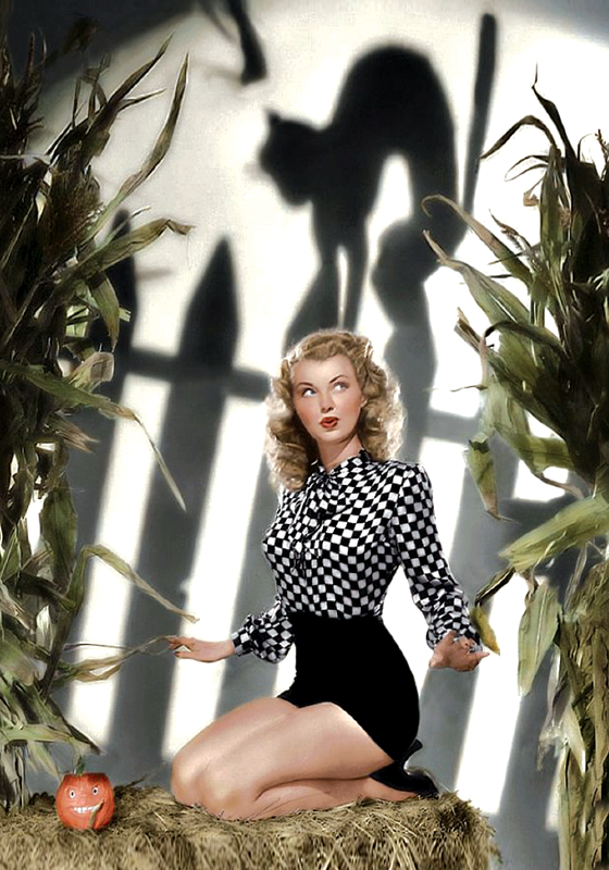 Vintage: Kitty Shadow (pin up)