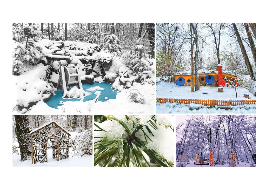 Photo: Winter scenes (bundle x 5 pieces) - top quality approved by www.postcardsmarket.com specialists