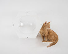 Load image into Gallery viewer, Modern Hexagon For Pet With Acrylic Glass