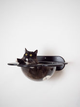 Load image into Gallery viewer, Wooden Shelf for cat in the shape of flower 5 colors