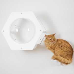 Modern Hexagon For Pet With Acrylic Glass