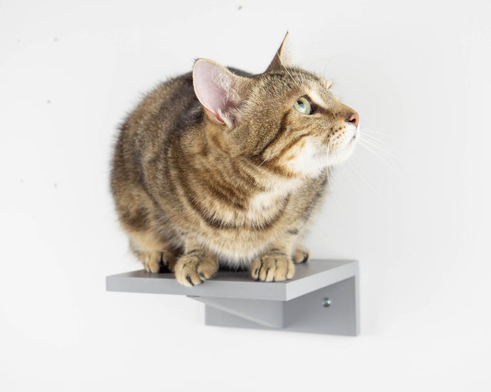 Wooden Step For Cat in the shape of rectangular