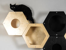 Load image into Gallery viewer, Cat complex Cat hammock Cat Tree Cat house Cat shelf Cat bed modern Cat furniture wall Cat tree furniture