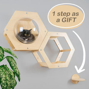 MODERN Set of 3 Items 2 Cat Houses + 1 STEP AS A GIFT FOR YOUR PET