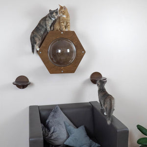Wall Furniture For Cat Set Of 3 Items In Dark Wood Color