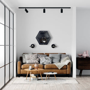 Wall Honeycomb And 2 Round Steps Black Color