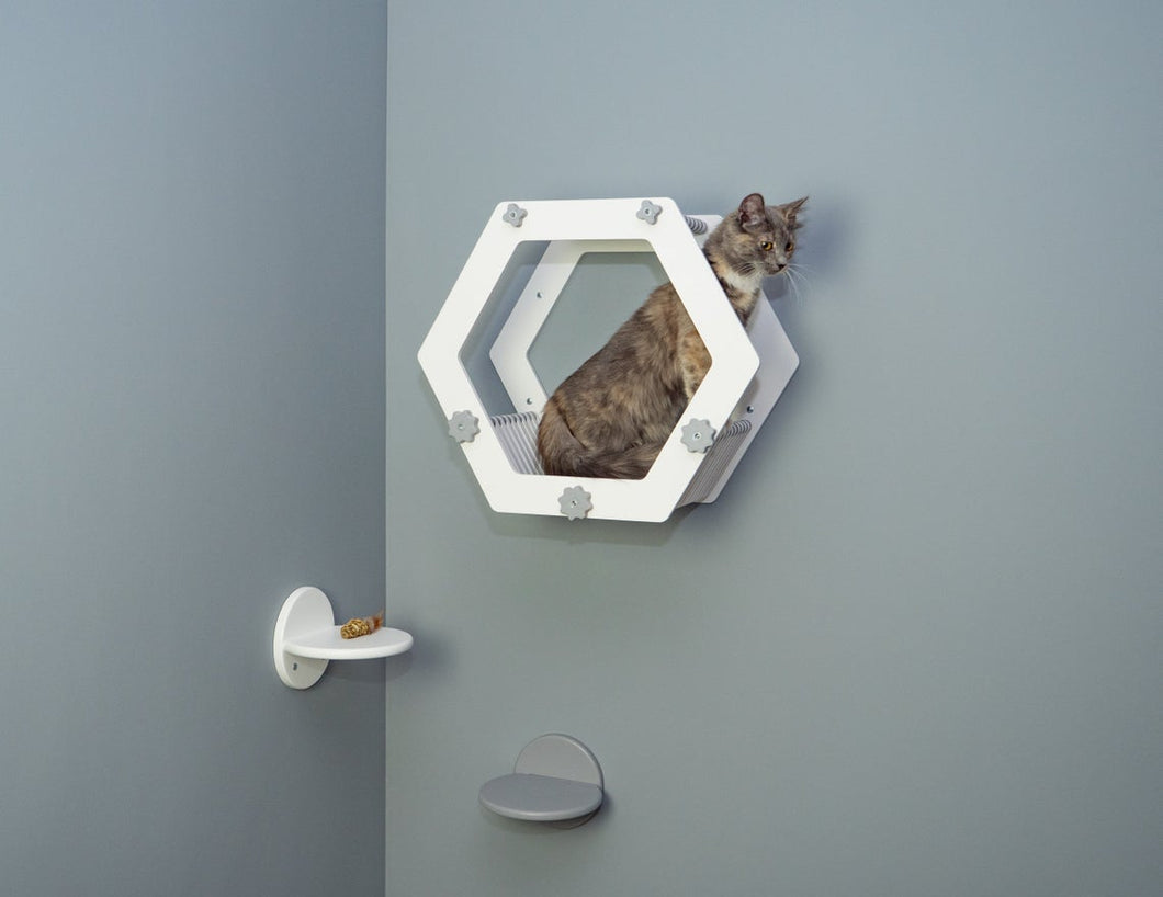 Modern White Hexagon with 2 Round Steps in Gray and White color