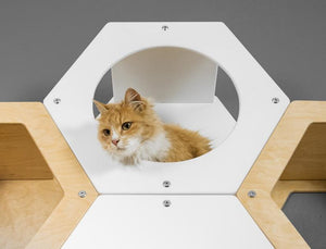 Modern cat furniture Animal cave set Climbing shelf Cat bed Pet Supplies Cat nest Climbing tree for kitty Sleeping place for cats Pet bed