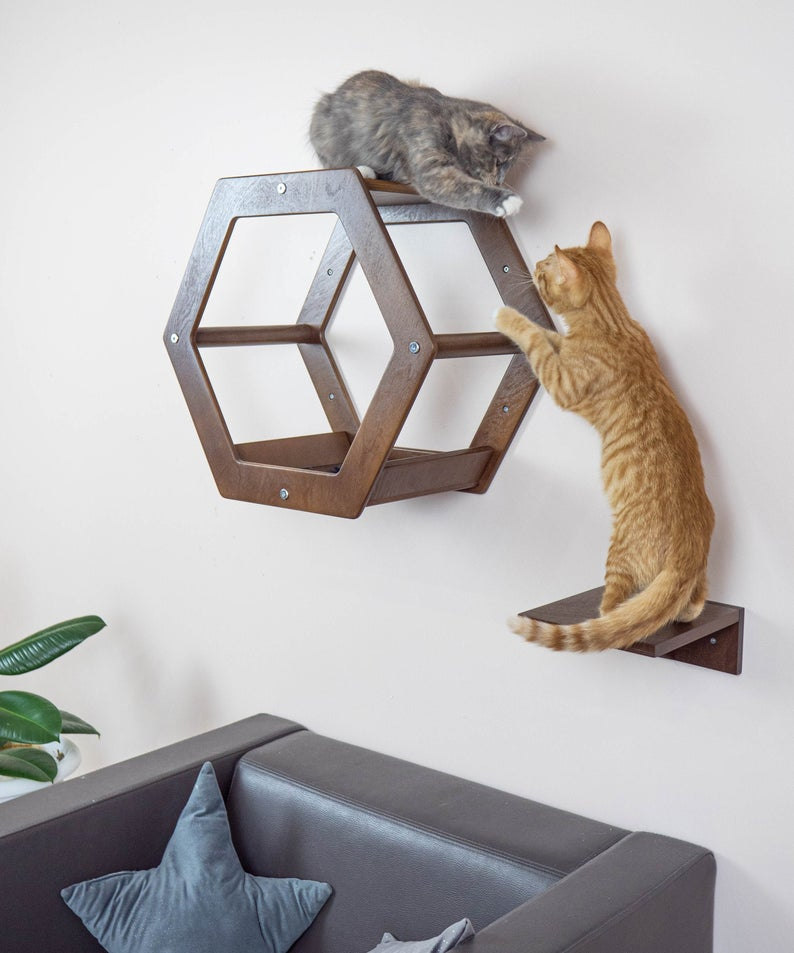 Modern cat set Hexagon and Square step Dark Wood